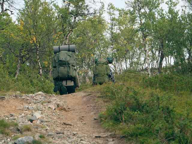 Miehet painuvat metsään