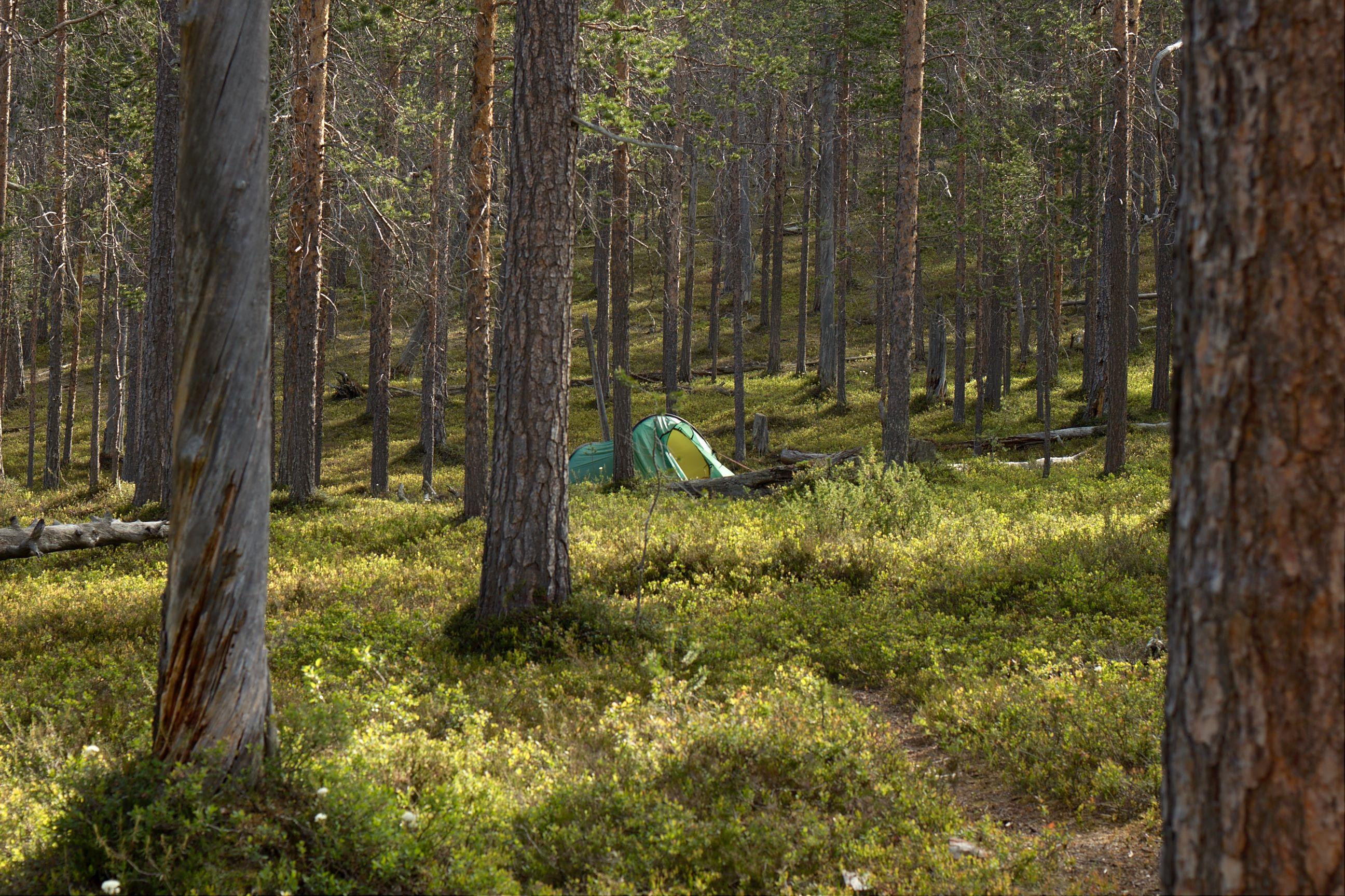 Teltta Maantiekurussa